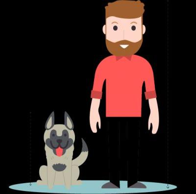 Akita Vs German Shepherd - What's The Difference?