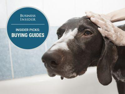 The best dog shampoo you can buy