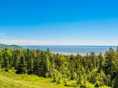 6 things to do in New Brunswick, Canada