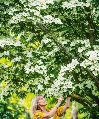 The gardens of Greenhaugh: A trip to England inspired this glorious garden in New Plymouth