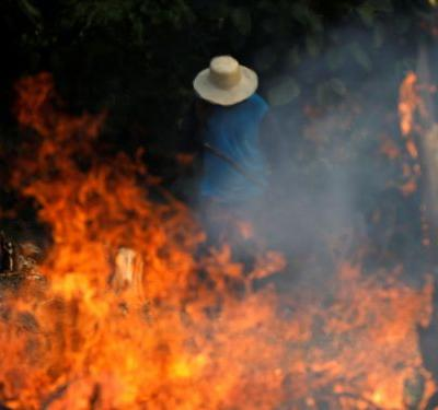 99% of the fires in the Amazon rainforest were started by humans, one expert says - here's why they've gotten so out of control