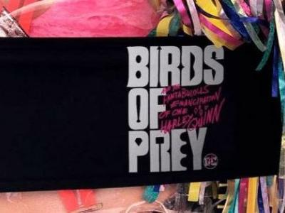 'Birds of Prey' is Getting Some New Action Scenes with Help from 'John Wick' Director Chad Stahelski