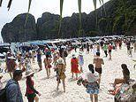 Ailing Thai beach made famous by Hollywood closes to