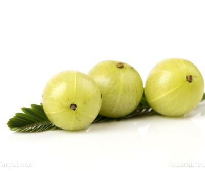 Manage your cholesterol levels with Indian gooseberry