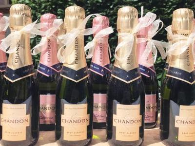 Cursed by Cuteness: Champagne Splits Are Easy to Love, but Hard to Embrace
