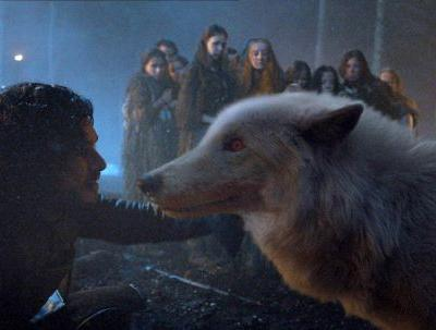 Jon Snow Gave Ghost To Tormund On 'Game Of Thrones' Because A Wolf Is A Man's Best Friend