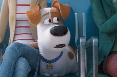 Secret Life of Pets 2 Trailer Takes Max to the Dreaded VetMax
