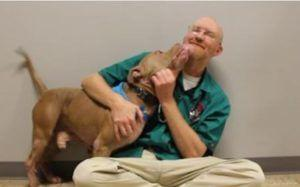 Vet Asked To Euthanize Dog Decides To Transform His Life Instead