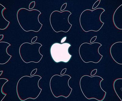 Apple tells Congress that it has found no sign of microchip tampering