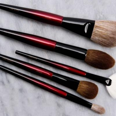 Sonia G Pro Face Brush Set Initial Impressions / Preliminary Reviews