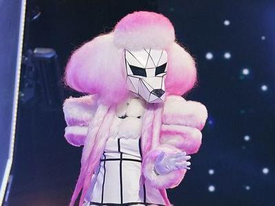 How The Masked Singer Protects Its Secrets From Smartphone Users