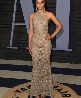 Shanina Shaik wears a sheer, silver tulle dress full embroidered