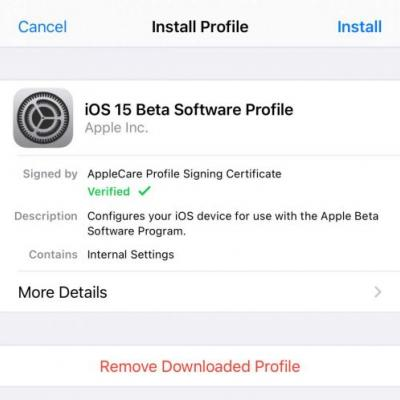 How to get the iOS 15 and iPadOS 15 beta-Developer Beta 2 is out