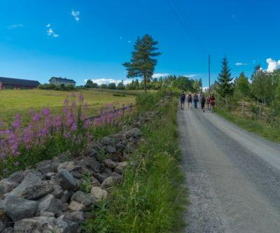 Everything You Need to Know About Walking Saint Olav's Way in Norway