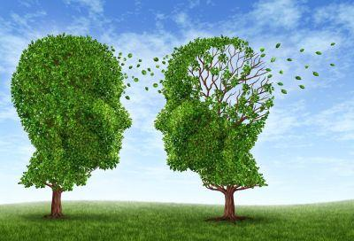 Alzheimer's Affects Twice as Many People as Estimated