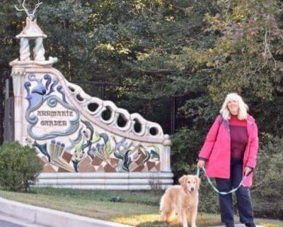 Pet Friendly Museums To Enjoy With Your Travel Buddy