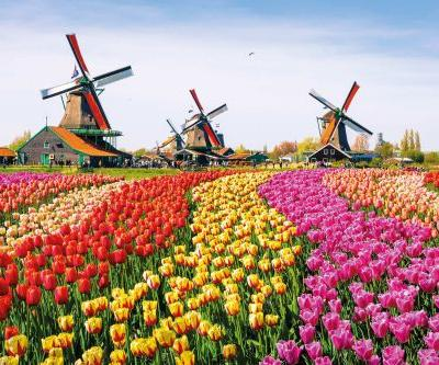 Amsterdam vs Copenhagen: Which city is right for you?