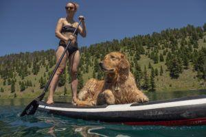 8 Fun Ways to Get Fit With Your Fur Baby