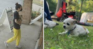 Suspicious Woman 'Finds' Stolen Dog, Then Refuses To Return Her
