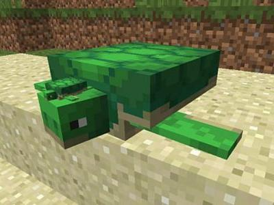 Minecraft Update Aquatic Turtle Breeding Guide
