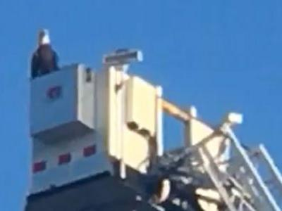 Bald eagle lands on firetruck during 9/11 tribute in Minnesota