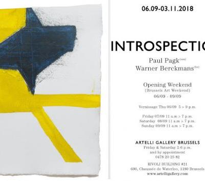 Introspection: Warner Berckmans Paul Pagk Artelli Gallery 6.09.2018 - 03.11.2018