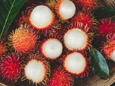Rambutan: Gut & Bone Supporter or Narcotic-Like Toxin?