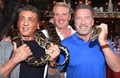 Stallone Shares Hilarious Expendables Reunion Video with