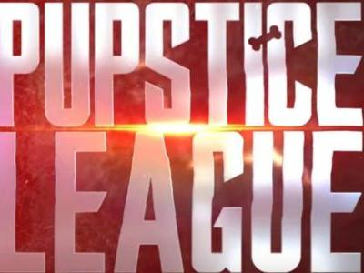 Watch The Justice League Trailer Remade With Dogs