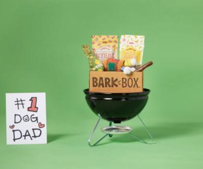 Fun Father's Day Gifts for the 1 Dog Dad