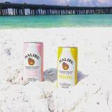 Friendly Reminder That Malibu Cocktails in a Can Exist - Easiest Piña Colada Ever!
