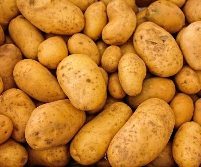 Fresh potatoes can improve blood sugar levels after consumption