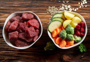 How Do the Top Fresh Dog Food Companies Compare?