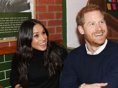 LOL, Meghan Markle And Prince Harry Are Having Trouble Potty Training Their New Pup