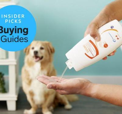 The best medicated shampoos for dogs you can buy
