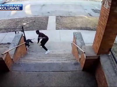 'The dog tried to bite me': Boy with broom pushes dog away from kids, video shows