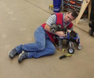 "Special Needs Dog Befriends Lowe's Employee Who Helps Him With His ""New Wheels"""