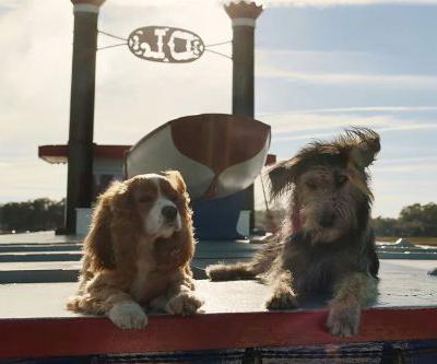 Disney+'s Live-Action 'Lady and the Tramp' Trailer Features Real, Cute Dogs