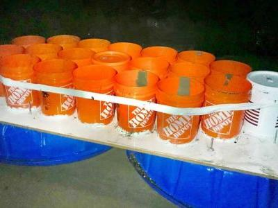2 students rescued aboard boat made of buckets, kiddie pools