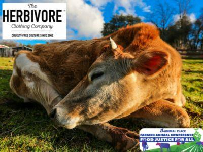 Excited for attendees of our Farmed Animal Conference on June
