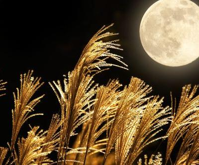 The Emotional Meaning Of The Harvest Moon 2019 Is About Recognizing Where Your Faith Lies