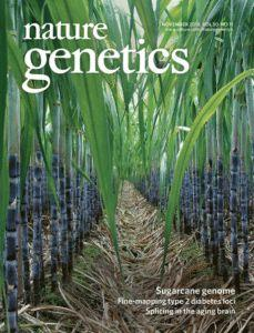 A Sweet Sequence: Sugarcane Genome Assembly After Five-Year Collaborative Effort