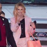 """Julia Roberts Dyed Her Hair """"Flamingo"""" Pink, and We're Flocking to the Salon"""