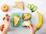 Stop putting your kids' food in plastic containers, top pediatricians say