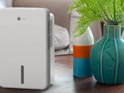 The 4 Best Small Dehumidifiers