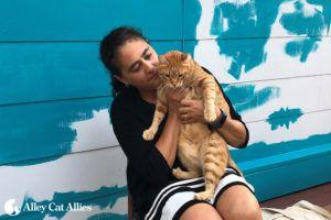 Feral Friends Network Profile: Nadia Sbeih Helps Cats Around the World