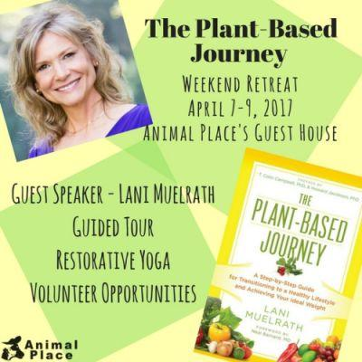 Join Lani Muelrath, author of The Plant-Based Journey, for a