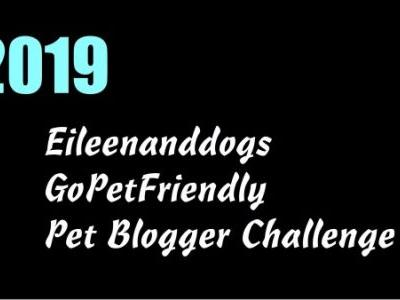 Eileenanddogs 2019 9th Annual Pet Blogger Challenge