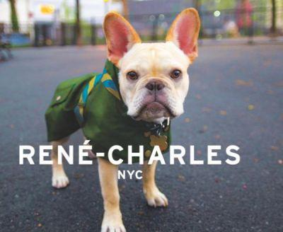 We Adore Rene-Charles, a Very Fashionable NYC Frenchie