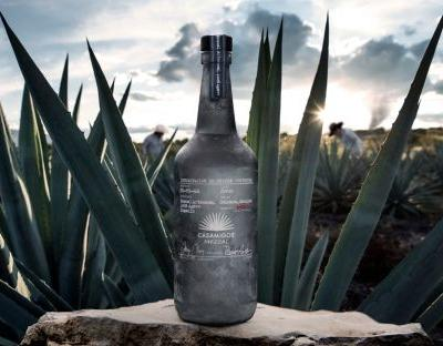 Make mine a mezcal: George Clooney and newly wed Jack Brooksbank team up to launch the Mexican spirit